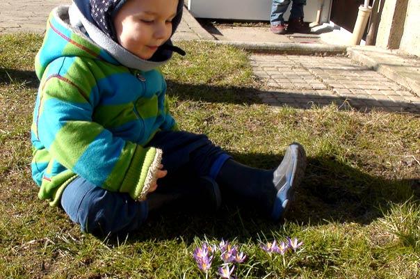 Kindertagespflege Tagesmütter Braunschweig: Frühling bei TiQ! Tagespflege in Querum