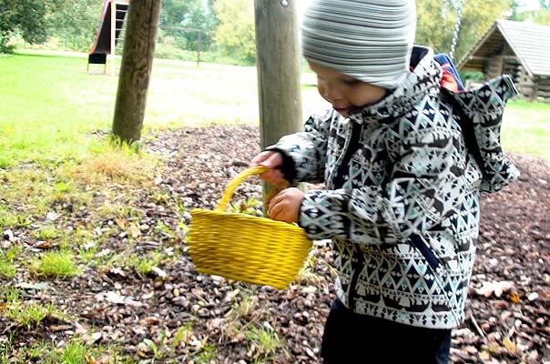 Bunte Tageskinder und buntes Herbstlaub ? TiQ! Tagespflege in Querum Nicole Appel und Antje Storek, Kindertagespflege Tagesmutter Großtagespflege Braunschweig Querum